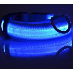 Collier LED Bleu